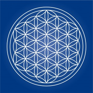 Flower of Life - editable vector lines